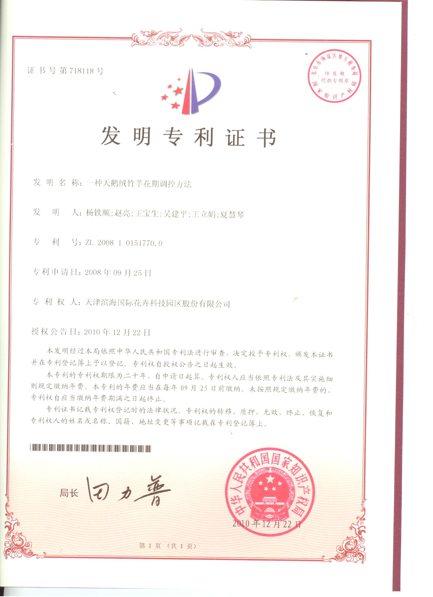 天鵝絨竹芋專利